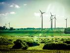 Chcete investovat pro vysoký výnos, ale s nízkým rizikem? Zkuste zelené investice. Na snímku větrné elektrárny.