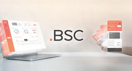Obrázek: BSC