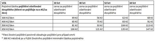 72c20ad66 Pojišťovna České spořitelny nově pojišťuje ošetřování dospělého ...