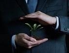 Obrázek: Rostlina v ruce